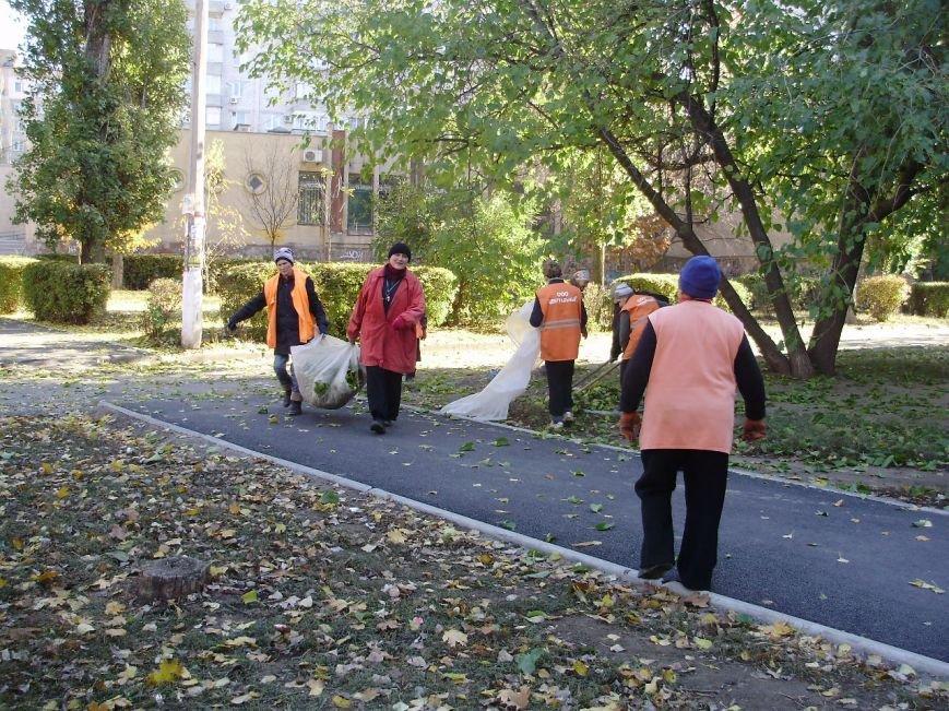 Николаевские коммунальщики воюют с опавшей листвой (ФОТО) (фото) - фото 8