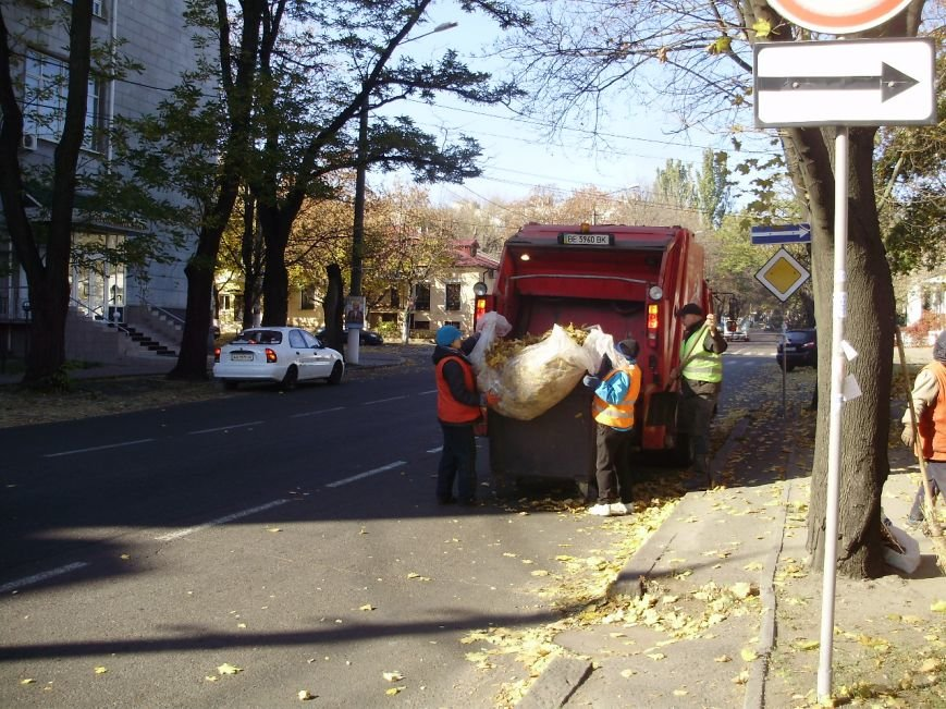 Николаевские коммунальщики воюют с опавшей листвой (ФОТО) (фото) - фото 4