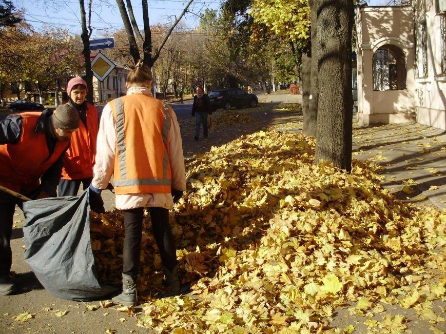 Николаевские коммунальщики воюют с опавшей листвой (ФОТО) (фото) - фото 1