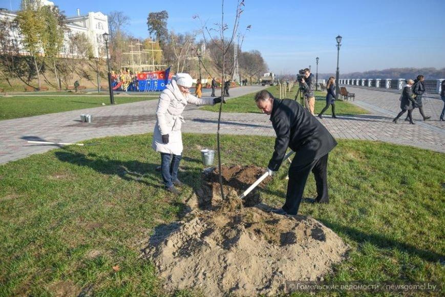Фотофакт: Мэр Гомеля принял участие в высадке деревьев на обновленной набережной, фото-1