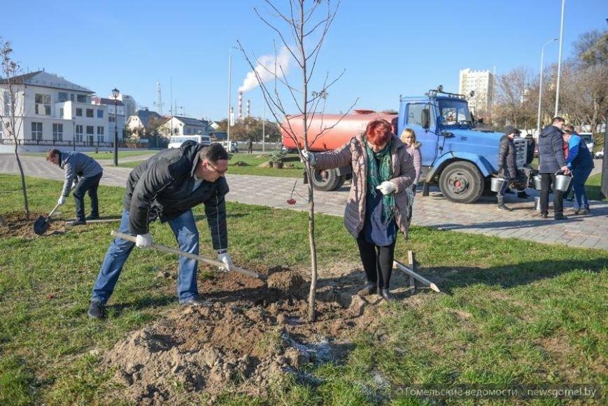 Фотофакт: Мэр Гомеля принял участие в высадке деревьев на обновленной набережной, фото-4