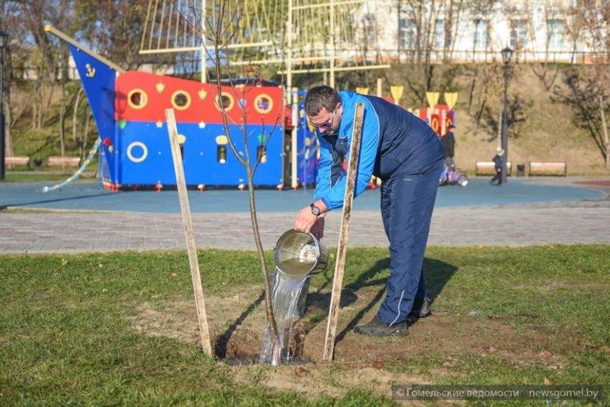 Фотофакт: Мэр Гомеля принял участие в высадке деревьев на обновленной набережной, фото-5