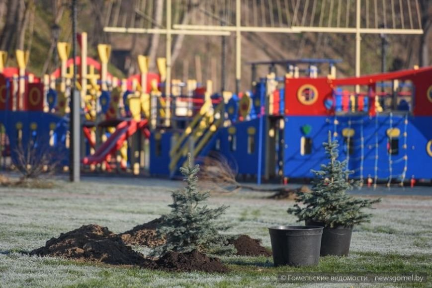 Фотофакт: Мэр Гомеля принял участие в высадке деревьев на обновленной набережной, фото-2