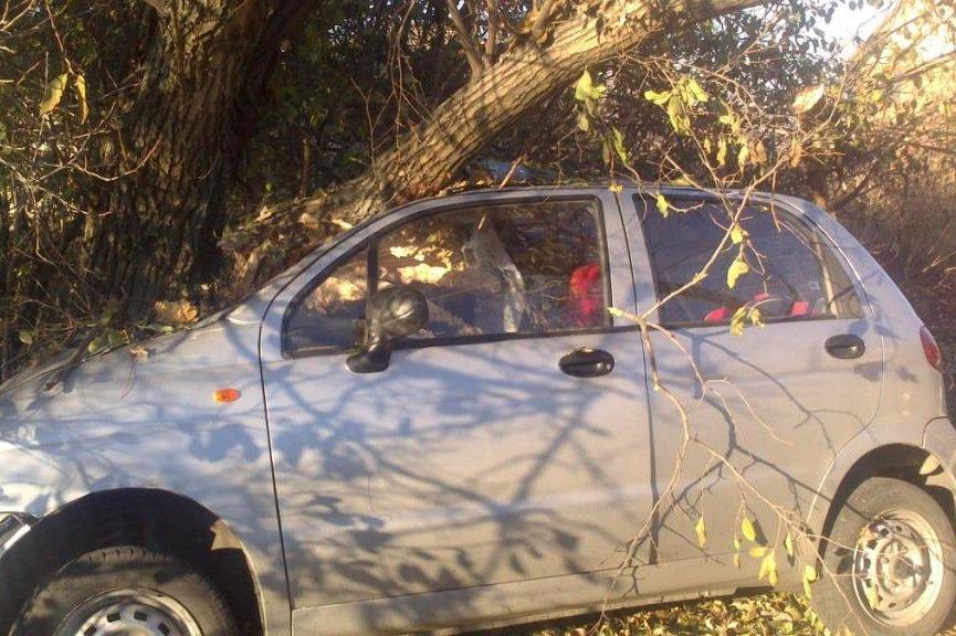 В Белгородской области пассажир УАЗа погиб при столкновении с автобусом (фото) - фото 1