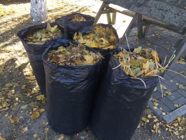 Никопольчане, не знаете что делать с опавшими листьями? Для Вас опыт областного центра (фото), фото-3
