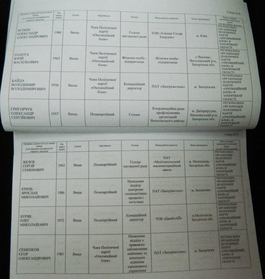 ОФИЦИАЛЬНО: имена новых депутатов запорожского областного совета (фото) - фото 1