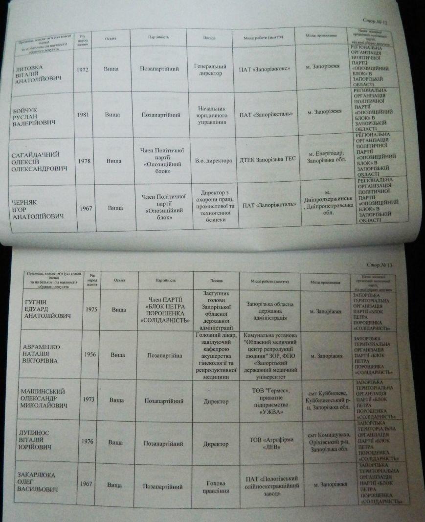 ОФИЦИАЛЬНО: имена новых депутатов запорожского областного совета (фото) - фото 3