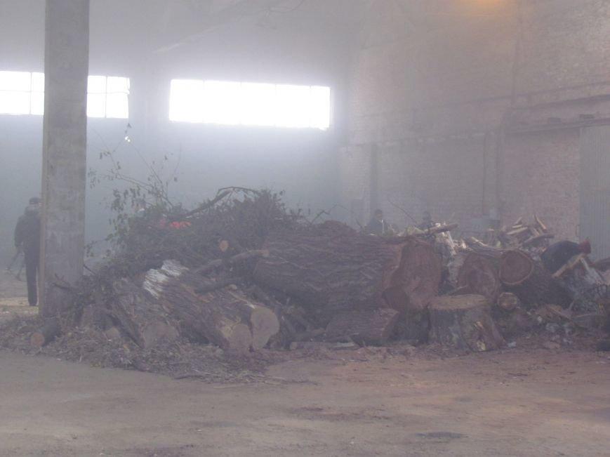 Предприятие Мариупольтеплосеть заготовило  дрова на всю зиму (ФОТО), фото-3