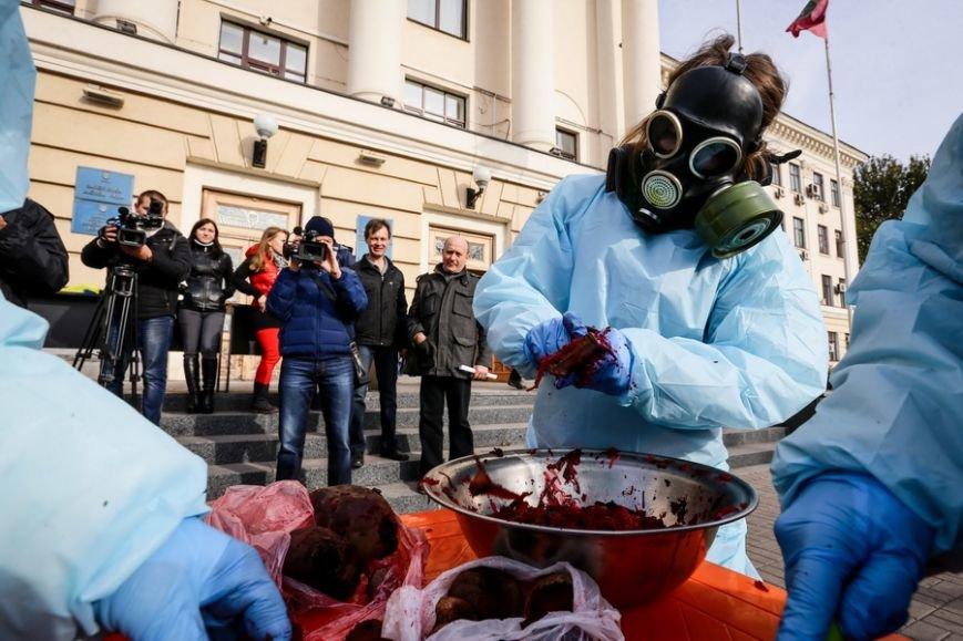 В Запорожье прошел митинг против свеклы, - ФОТО (фото) - фото 1