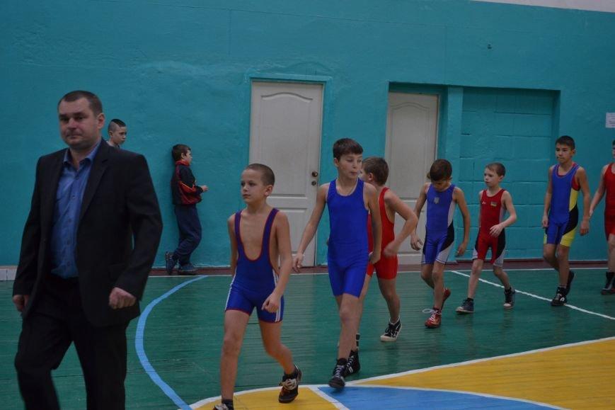 В Днепродзержинске прошел городской чемпионат по греко-римской борьбе, фото-1