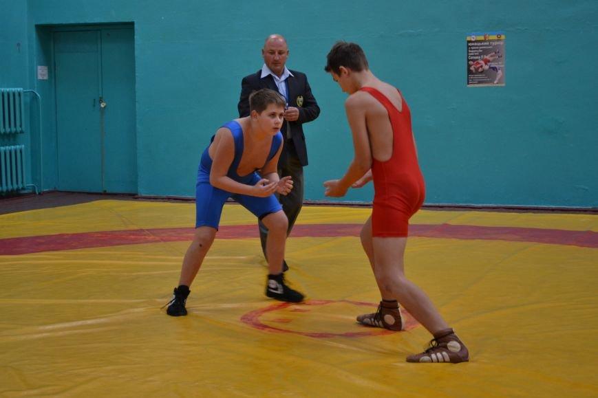 В Днепродзержинске прошел городской чемпионат по греко-римской борьбе, фото-9