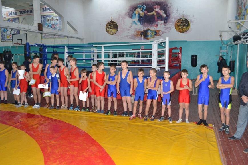 В Днепродзержинске прошел городской чемпионат по греко-римской борьбе, фото-16
