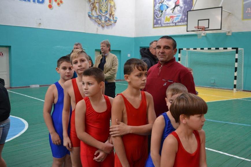 В Днепродзержинске прошел городской чемпионат по греко-римской борьбе, фото-6