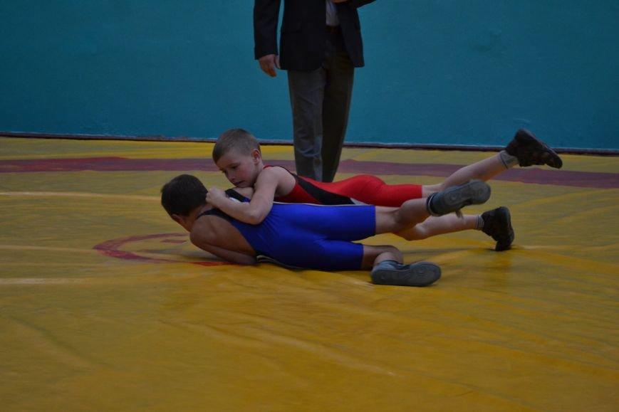 В Днепродзержинске прошел городской чемпионат по греко-римской борьбе, фото-11