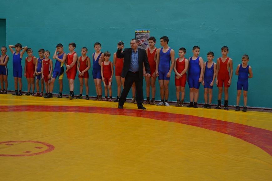 В Днепродзержинске прошел городской чемпионат по греко-римской борьбе, фото-5