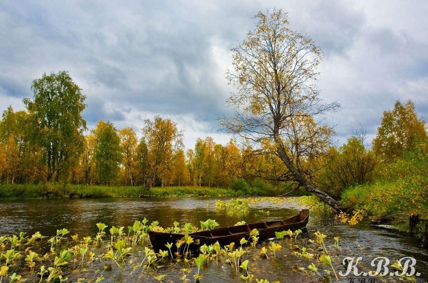 Сыктывкарский фотограф стал финалистом престижного конкурса (фото) - фото 3