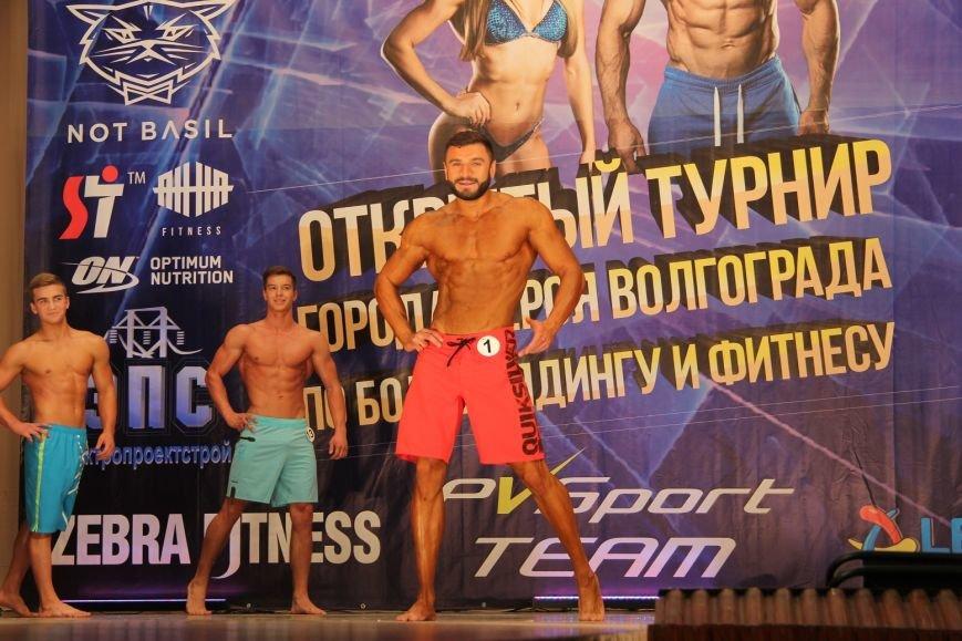 В Волгограде прошел первый турнир по бодибилдингу, фото-6