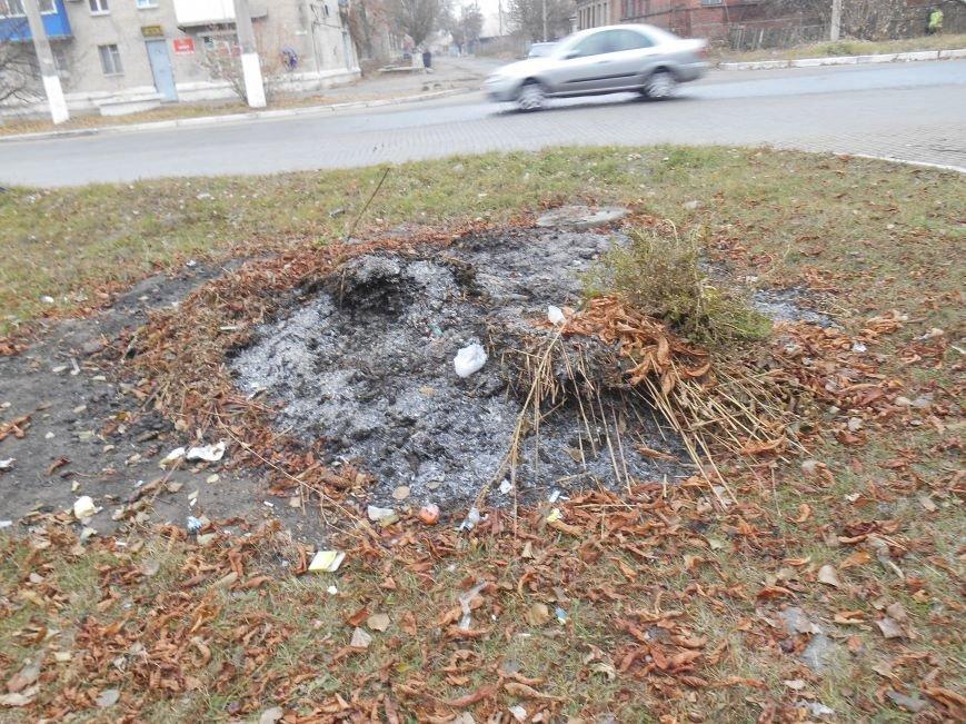 Чем славянцам грозит дым от сжигания листьев (фото) - фото 1