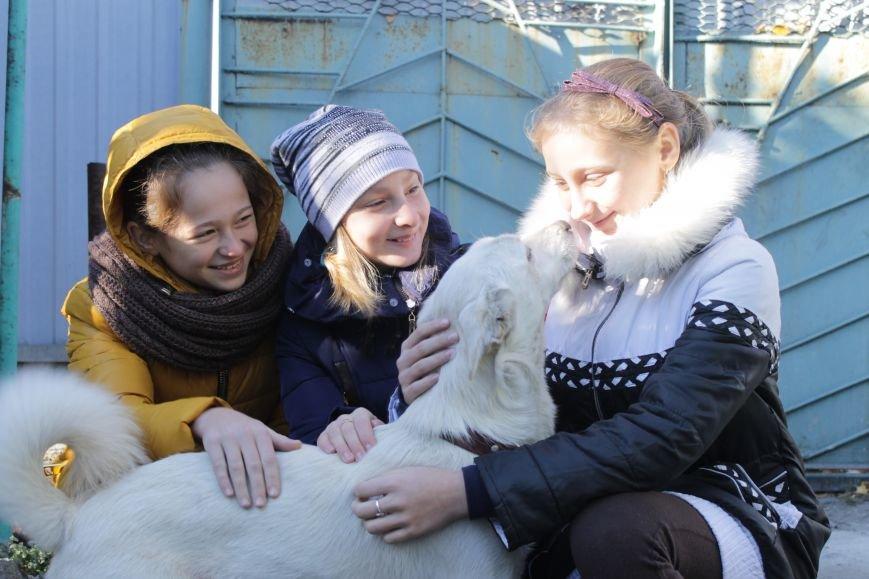 Белозерские школьники посетили мини-приют для животных (ФОТО), фото-9