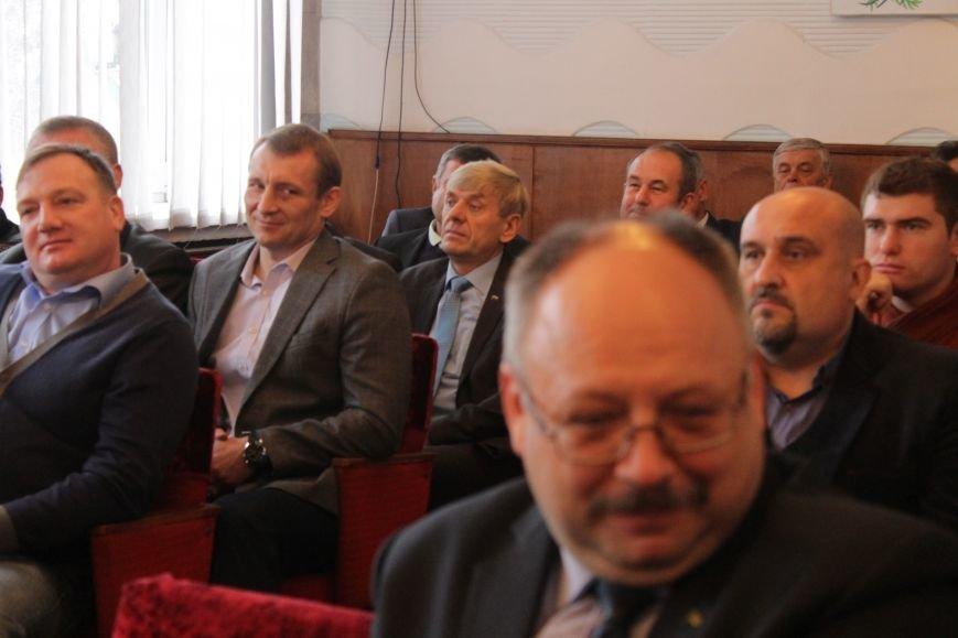 В Добропольском районном совете выбрали новых руководителей, фото-4