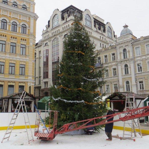 На Софиевской площади установили первую елку (ФОТОФАКТ) (фото) - фото 1