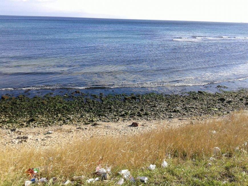 7d64a6b60658e725d3308f9245464299 Грандиозный морской отлив под Одессой впечатляет своими масштабами