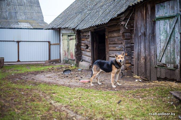 Несмотря на бурное строительство жилья возле Островецкой АЭС девушка-инвалид полжизни ждет социальную квартиру (фото) - фото 14