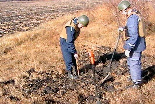В Криворожском районе историко-поисковая организация нашла 50 единиц минометных мин (ВИДЕО) (фото) - фото 1