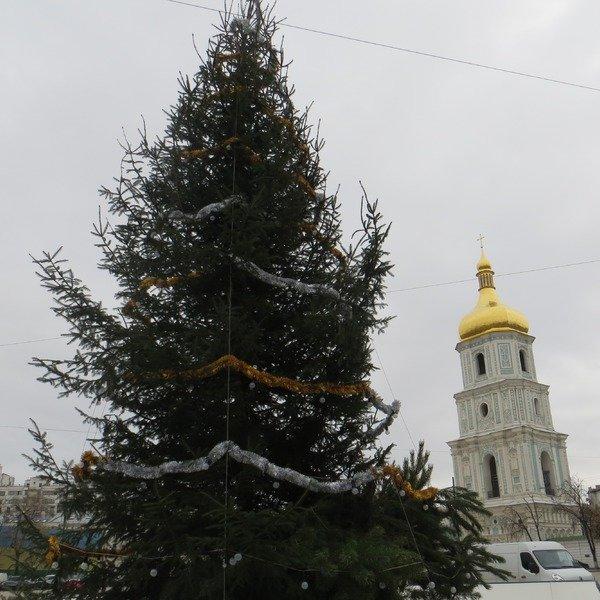 В Києві встановили перші новорічну ялинку (фото) - фото 1