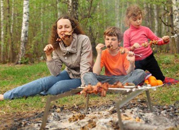 Новый фотоконкурс от сайта www.go61.ru «Все на шашлыки» (фото) - фото 2