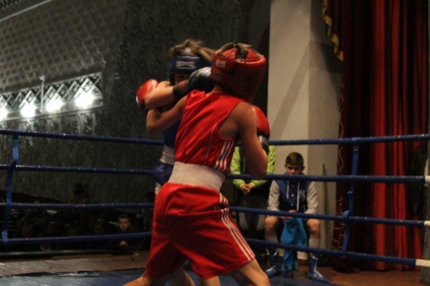 В Доброполье стартовал областной турнир по боксу (ФОТО), фото-14