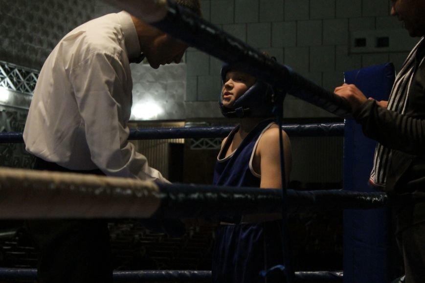 В Доброполье стартовал областной турнир по боксу (ФОТО), фото-7