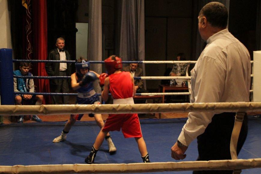 В Доброполье стартовал областной турнир по боксу (ФОТО), фото-12