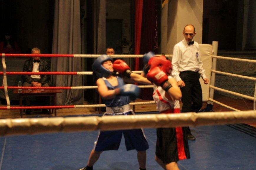 В Доброполье стартовал областной турнир по боксу (ФОТО), фото-5