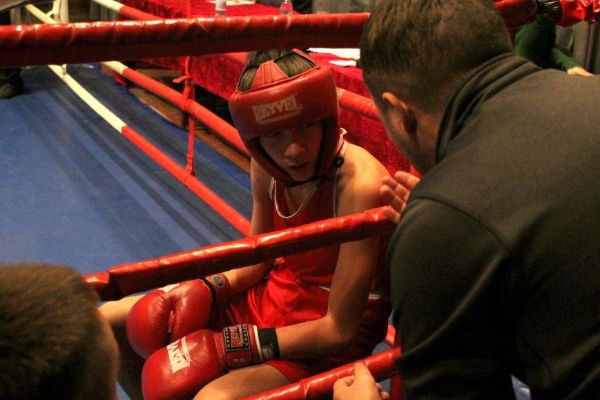 В Доброполье стартовал областной турнир по боксу (ФОТО), фото-16
