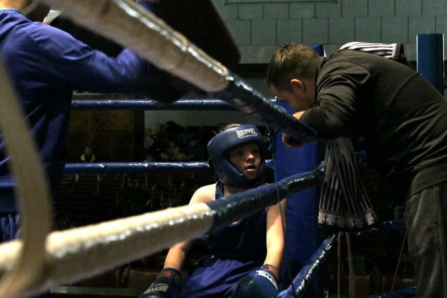 В Доброполье стартовал областной турнир по боксу (ФОТО), фото-10
