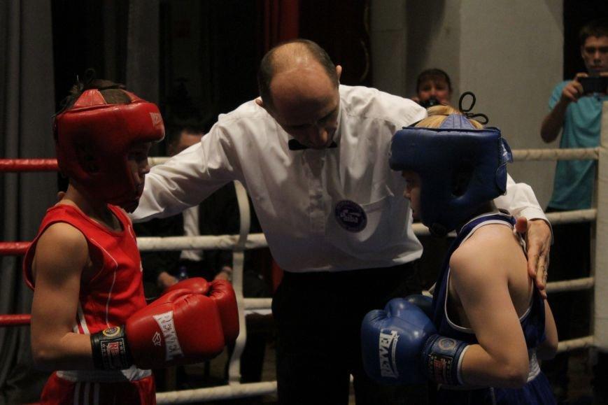В Доброполье стартовал областной турнир по боксу (ФОТО), фото-8