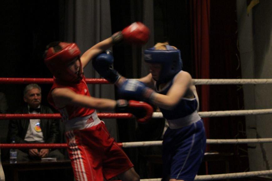 В Доброполье стартовал областной турнир по боксу (ФОТО), фото-9