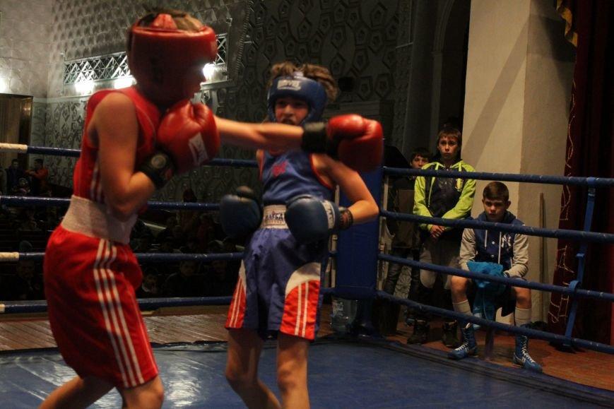 В Доброполье стартовал областной турнир по боксу (ФОТО), фото-15