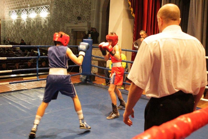 В Доброполье стартовал областной турнир по боксу (ФОТО), фото-17