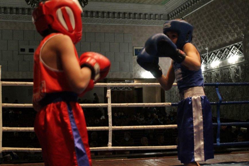 В Доброполье стартовал областной турнир по боксу (ФОТО), фото-11