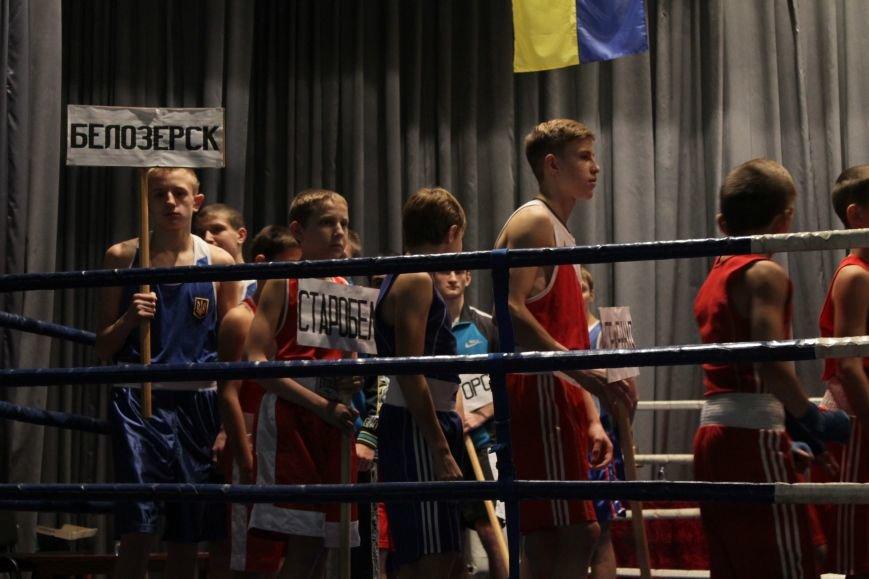 В Доброполье стартовал областной турнир по боксу (ФОТО), фото-3