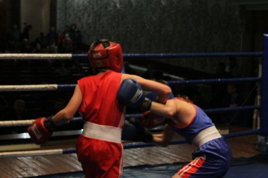 В Доброполье стартовал областной турнир по боксу (ФОТО), фото-13