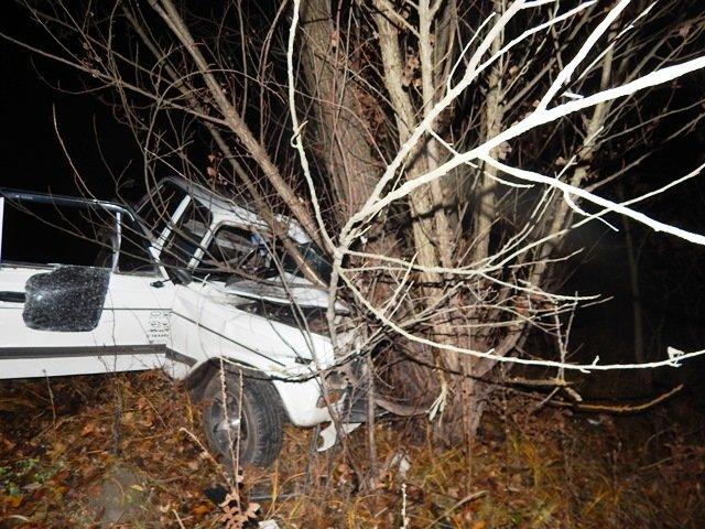 В Любарском районе в изуродованом автомобиле нашли тела двух мужчин (ФОТО) (фото) - фото 1