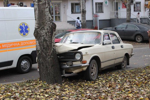 В Николаеве Волга протаранила дерево (ФОТО) (фото) - фото 2