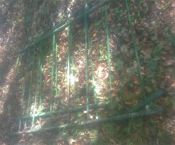 Житель Кировоградской области надругался над могилами (ФОТО) (фото) - фото 1