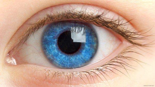 глаз-человека