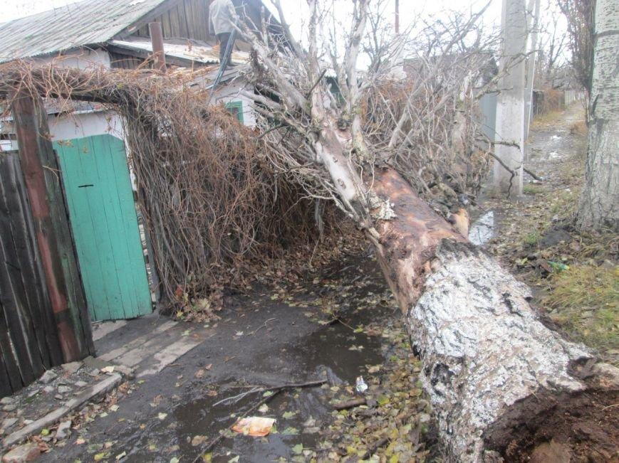 В макеевском поселке Ханженково на жилой дом упало старое дерево (фото) - фото 1