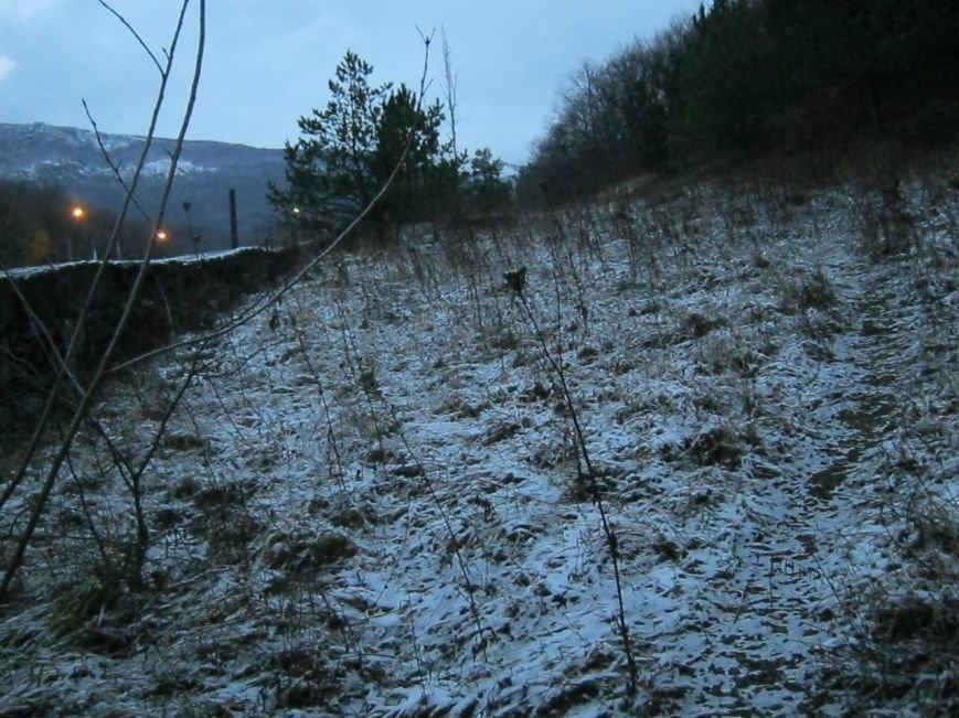 В Крыму выпал первый снег (ФОТОФАКТ), фото-1