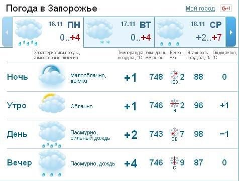 В Запорожье – первый снег (фото) - фото 1